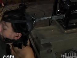 Gal receives a neck collar and legs widen wide open
